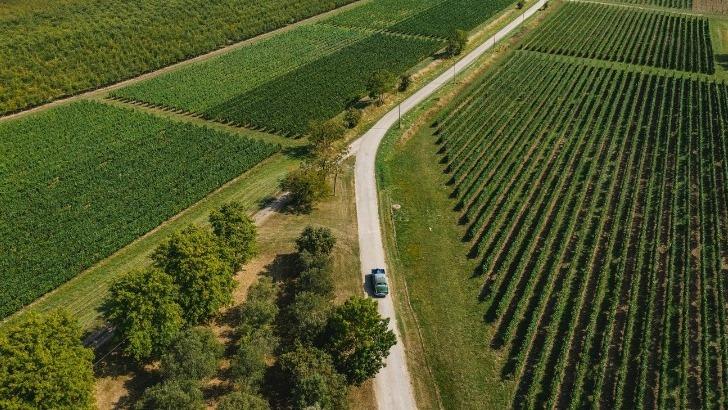vignoble-etend-sur-20-hectares-au-chateau-de-gensac