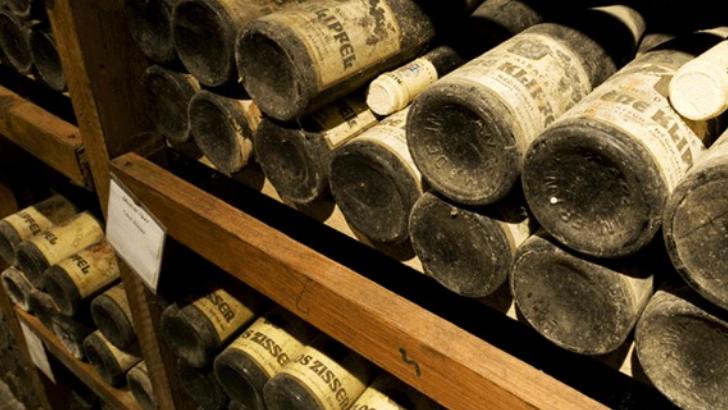 bons-vins-necessitent-de-patience-et-de-passion