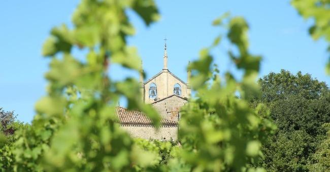 chateau-bourdicotte-a-saint-magne-de-castillon