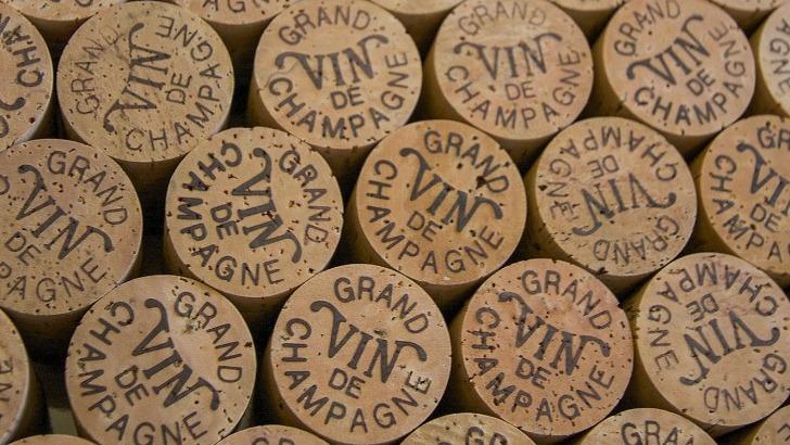 champagne-berceau-de-effervescence-etendant-sur-5-departements-seine-et-marne-aisne-marne-aube-et-haute-marne