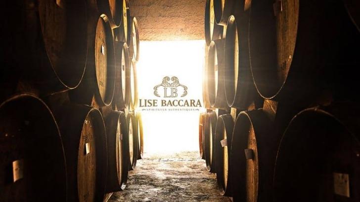 lise-baccara-a-pons-30-ans-de-savoir-faire-matiere-de-cognac-et-de-spiritueux