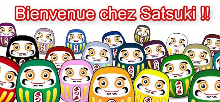 epicerie-japonaise-satsuki-dispose-d-une-offre-comprenant-3000-references-sans-oublier-conseils-prodigues