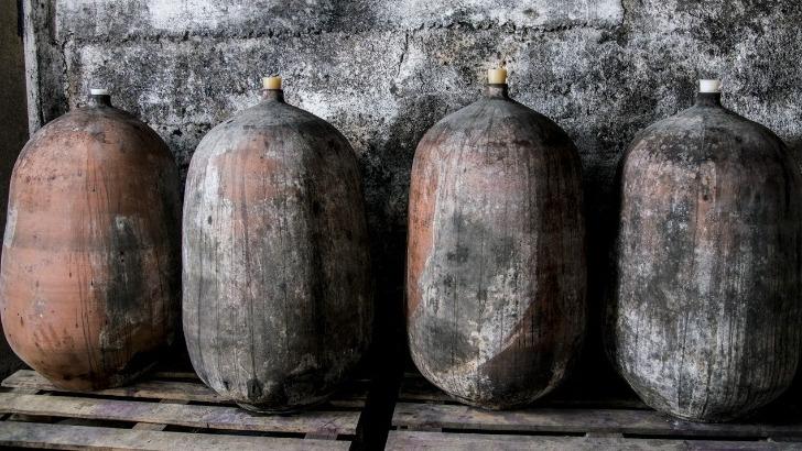domaine-grand-guilhem-des-vins-inspirant-a-un-veritable-retour-aux-sources