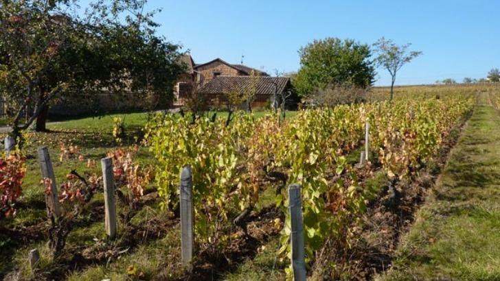 chateau-de-pravins-biodiversite-est-a-honneur