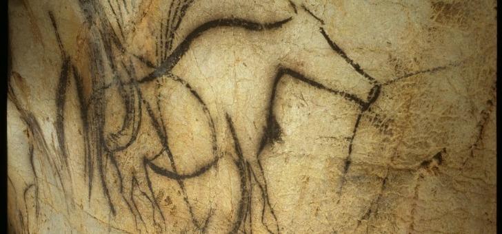 aurochs-centre-prehistoire-pech-merle-cabrerets