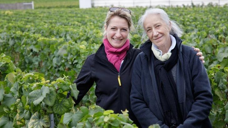 champagne-pierre-moncuit-vigneronnes-de-mere-fille