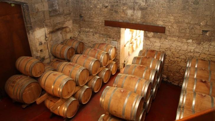 chateau-graves-de-viaud-elever-vins-dans-meilleures-conditions