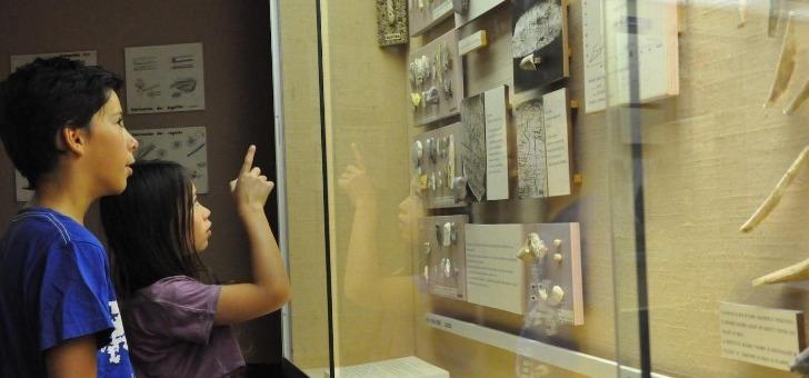 musee-de-prehistoire