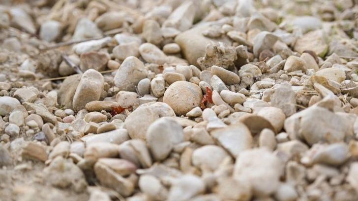 domaine-pique-basse-des-sols-argilo-calcaires-et-terrasses-caillouteuses-font-des-vins-rouges-etonnament-frais