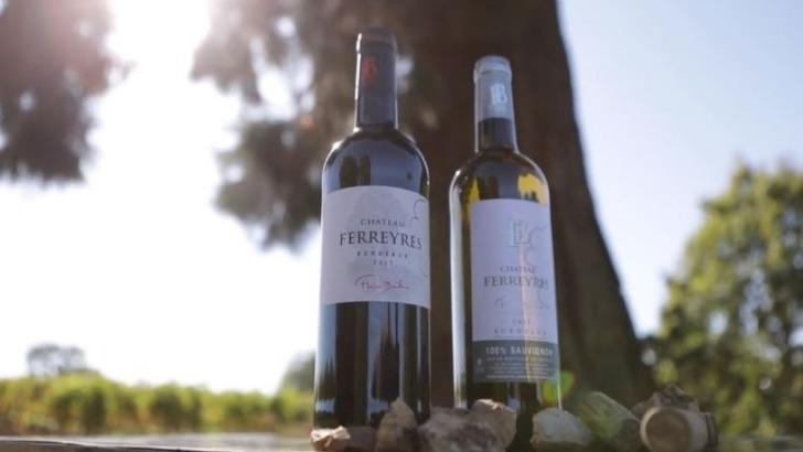 chateau-ferreyres-des-vins-harmonie-avec-nature