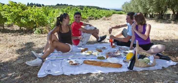 pique-nique-entre-vignes-et-oliviers