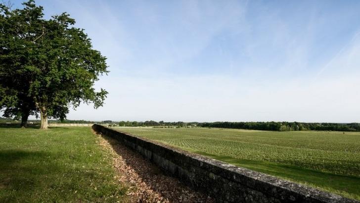 chateau-virou-vue-sur-vignes-depuis-plateau