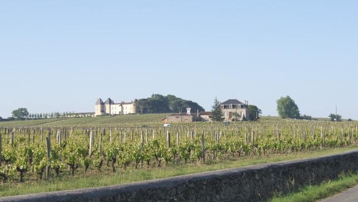 vins-alcools-domaine-chateau-lafon-a-sauternes