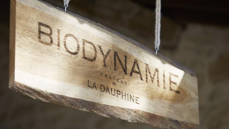 chateau-dauphine-a-fronsac-une-propriete-adopte-de-bonnes-pratiques-environnementales-biodynamie-est-appliquee-depuis-2015