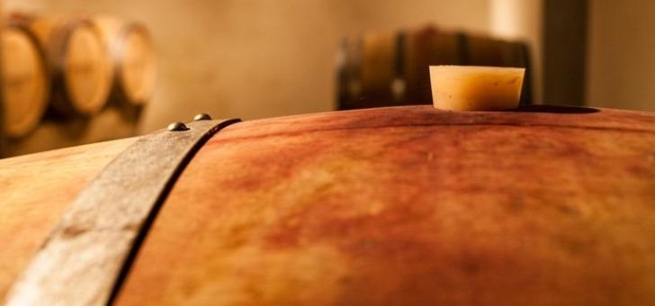 chateau-bourdieu-fonbille-a-monprimblanc-fierement-represente-par-deux-cuvees-tradition-rouge-tradition-et-loupiac-liquoreux-2015-tradition