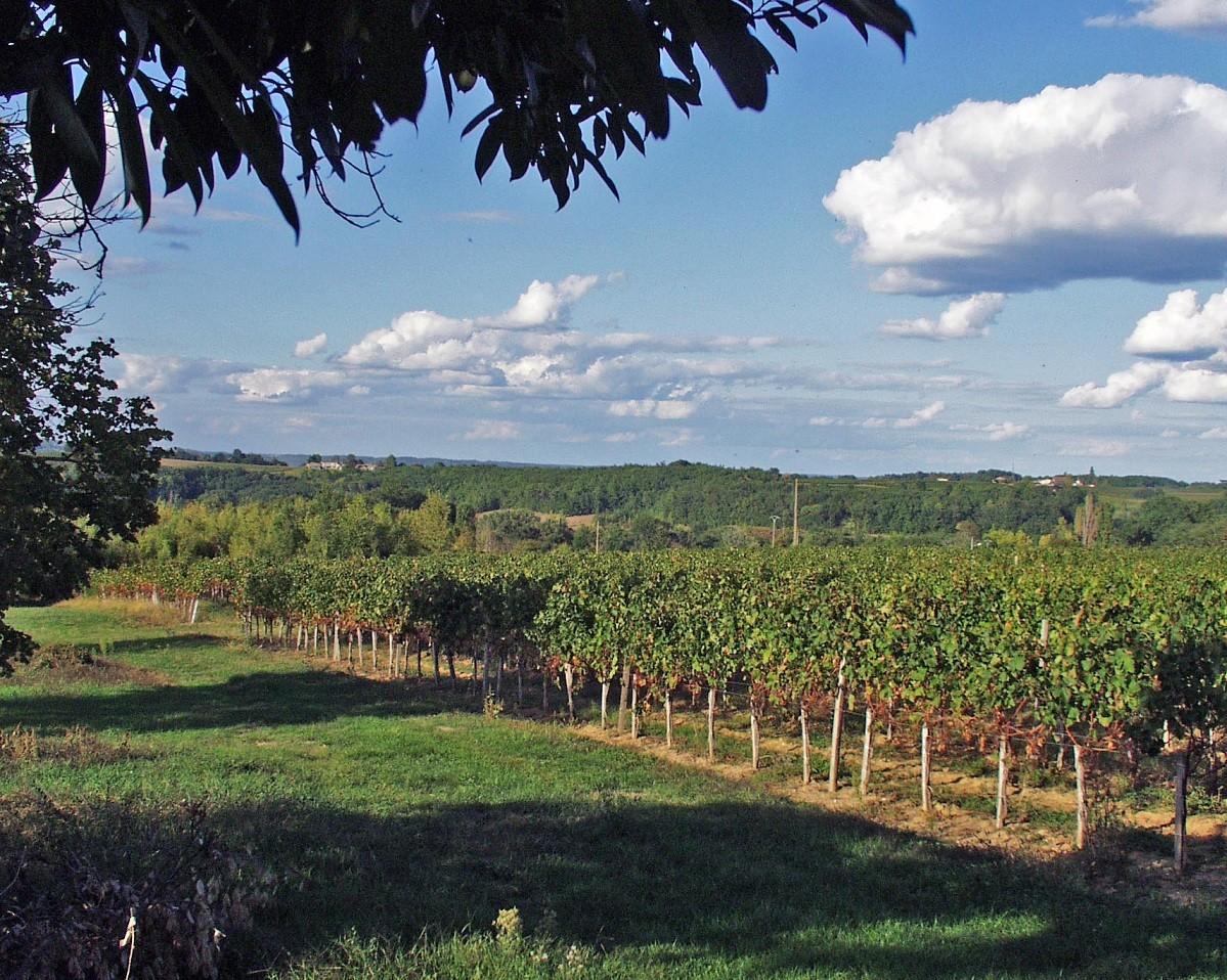 chateau-pre-lande-14ha-de-vignes-cultivees-agriculture-biodynamique