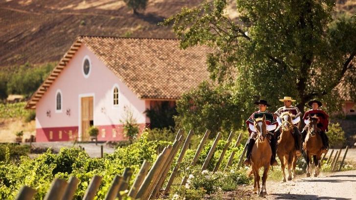 balade-vignes-domaine-francois-lurton-vayres