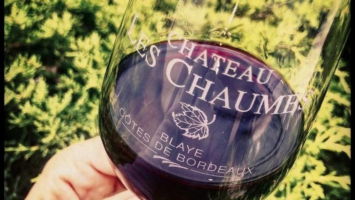 chateau-chaumes-des-vins-plaisir-a-robe-intense