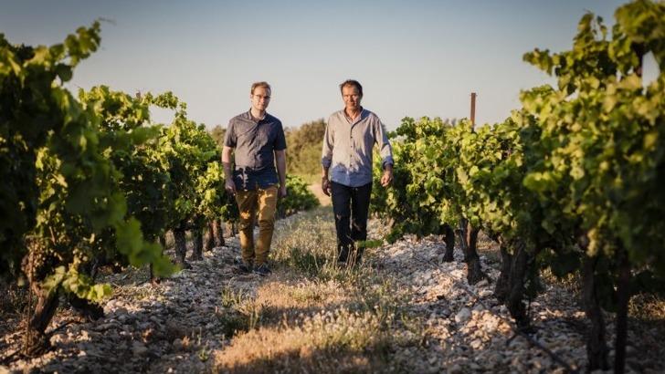 domaine-de-brunely-a-travers-une-viticulture-raisonnee-famille-carichon-travaille-sol-et-vigne-vert