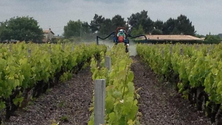 sce-vignobles-jander-une-exploitation-prone-agriculture-biologique
