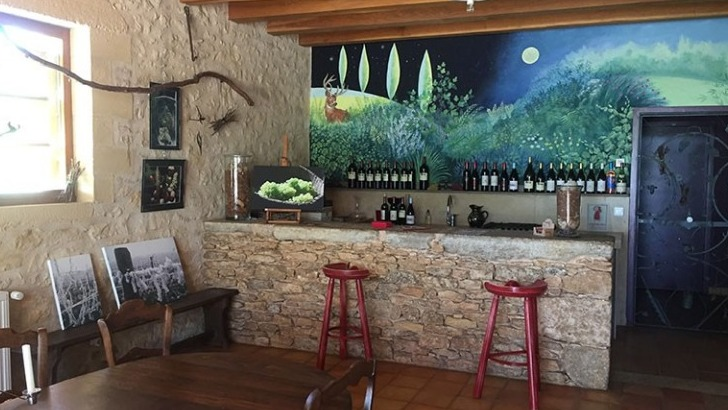 domaine-belmont-propose-des-visites-du-vignoble-et-du-chai-pour-satisfaire-curiosite-des-amateurs-de-bons-vins