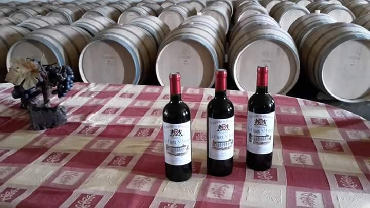 chateau-croix-saint-andre-des-vins-caracteristiques-de-region-du-libournais