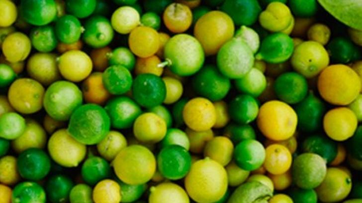 care-eat-a-saint-etienne-une-solution-globale-permet-aux-acteurs-dans-agroalimentaire-de-laisser-un-impact-dans-communaute