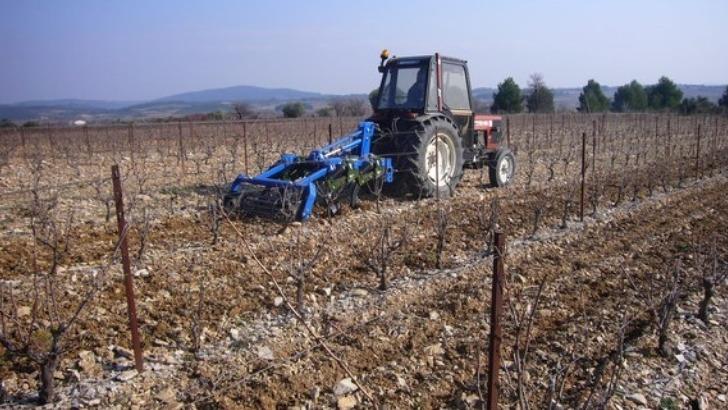 domaine-monastrel-parce-qu-un-bon-vin-commence-par-travail-de-vigne