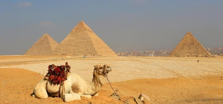 e-visums-remplir-facilement-formulaire-de-demande-de-visa-pour-egypte