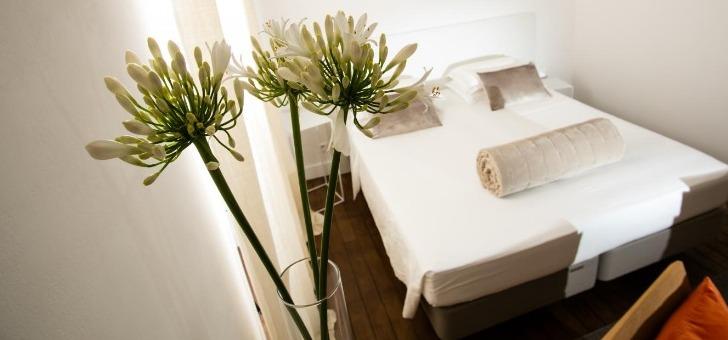 hotel-particulier-beziers-a-beziers-etablissement-de-prestige