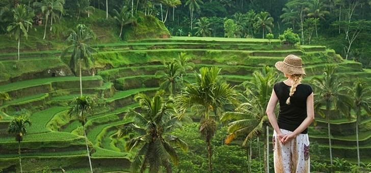des-rizieres-terrasse-a-ubud