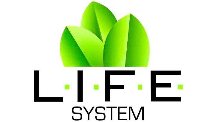logo-i-f-e-system