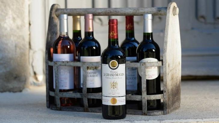 vignobles-gabriel-co-promoteur-des-vins-de-bordeaux