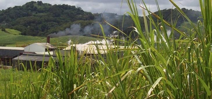 usine-produit-jusqu-a-600-000-litres-de-rhum