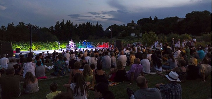 concert-theatre-de-verdure-emmanuel-djob-a-viavino