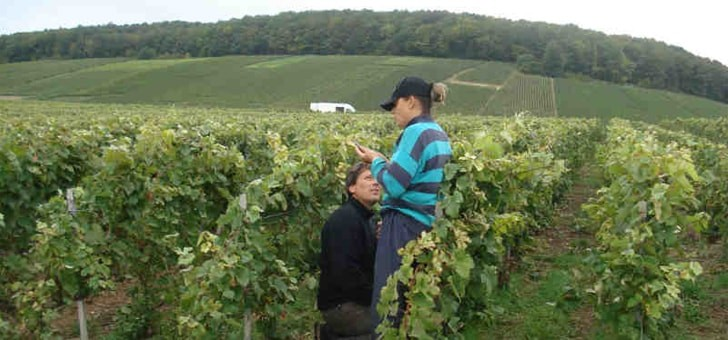 nathalie-et-richard-investissent-dans-vigne