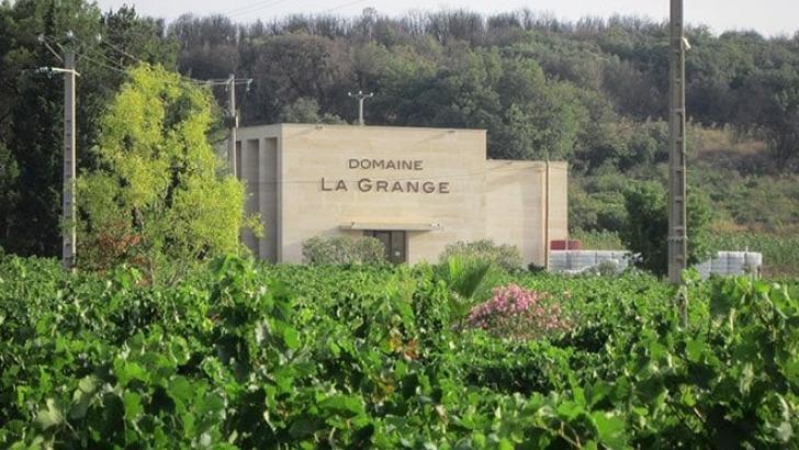 domaine-grange-des-gites-au-coeur-du-vignoble-sont-disponibles-pour-oenotouristes-et-oenophiles-souhaitant-prolonger-plaisirs
