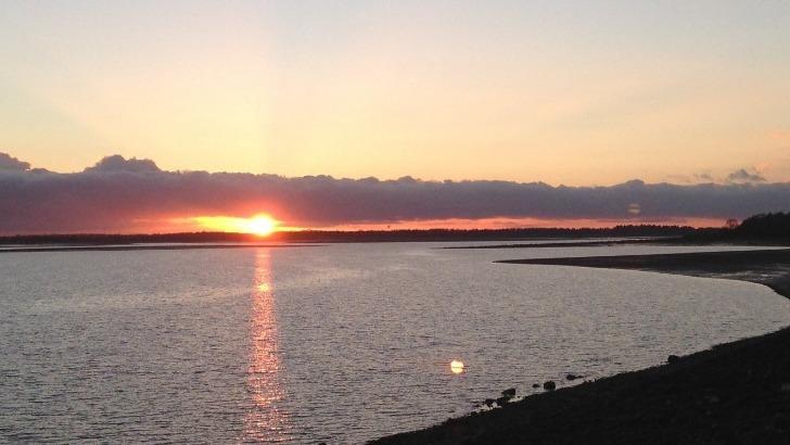 lac-du-der-un-des-plus-grands-lacs-artificiels-d-europe-avec-sa-reserve-ornithologique-d-exception-adt-marne