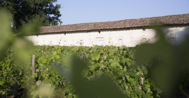 chateau-moulin-a-vent-cru-bourgeois-d-exception