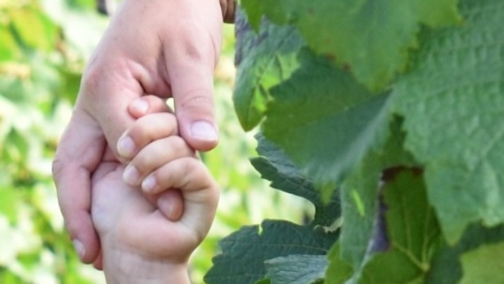 champagne-xavier-loriot-a-binson-et-orquigny-passion-de-vigne-de-generation-generation