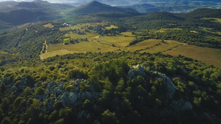 mas-llossanes-panorama-roc-del-maur-du-roussillon