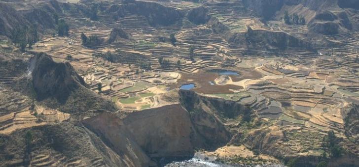 vue-sur-terrasses-incas-au-canyon-de-colca
