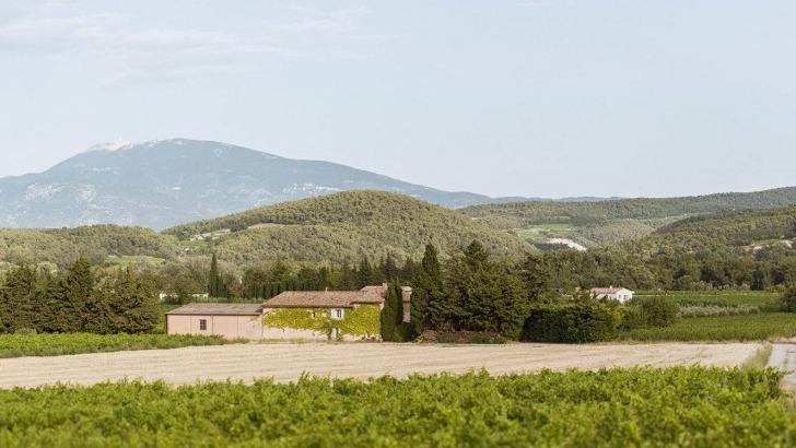 domaine-pique-basse-situe-sur-coteaux-de-roaix-vaucluse-face-du-mont-ventoux