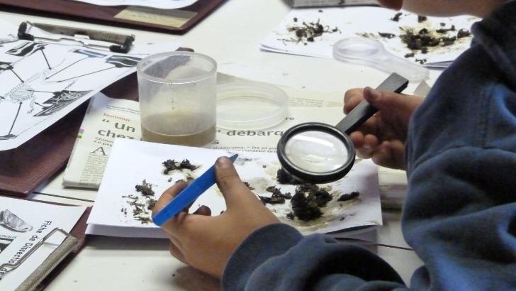cdpne-mene-des-campagnes-de-sensibilisation-a-preservation-de-environnement-aupres-des-ecoles-et-du-grand-public