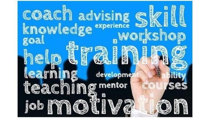 deaif-consulting-a-marcq-baroeul-coaching-d-equipe-accompagnement-de-transition-professionnelle-et-bilan-de-competences