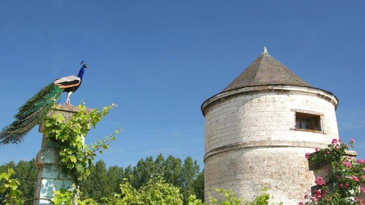 pigeonnier-du-16e-siecle-abbaye-valloires-argoules