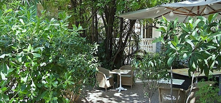 un-jardin-tropical-hors-du-commun