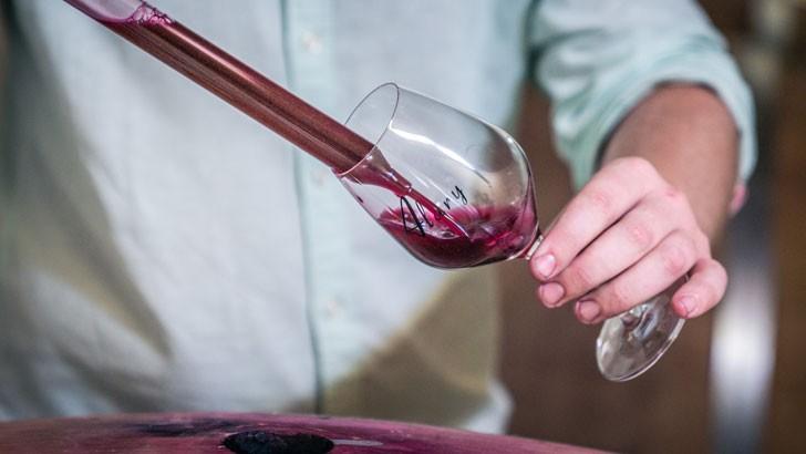 domaine-alary-des-vins-issus-d-une-vinification-et-d-un-elevage-toujours-plus-innovants