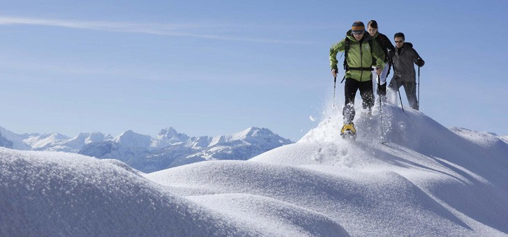 viamonts-trekking-rien-de-mieux-grand-air-de-montagne-pour-revivifier