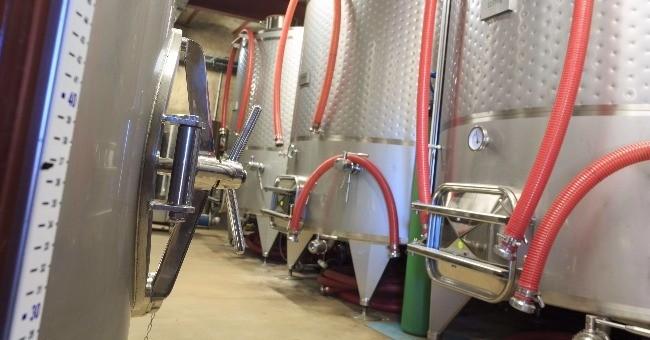 vins-alcools-domaine-domaine-cap-saint-pierre-a-gassin